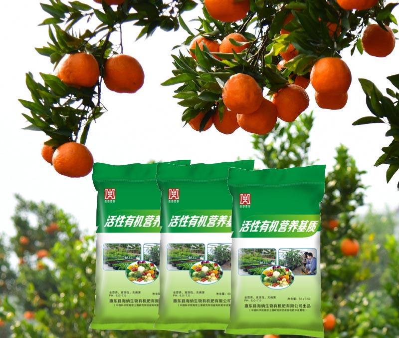 柑橘专用肥